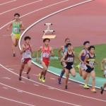 800m予選 小林