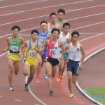 800m決勝 三上(左) 野口(右)