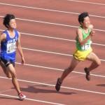 100m 竹花
