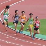 800m予選 金澤