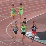 5000m予選 野口