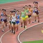 1500m決勝 田端(左) 後藤(右)