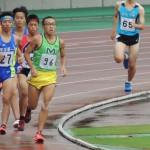 800m予選 櫻井