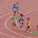 800m予選 橋本