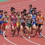 1500m予選 橋本
