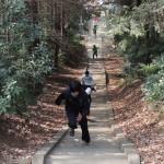 羽黒神社の階段上り