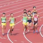 800m決勝 小池(右) 高見沢(中) 小林(右)